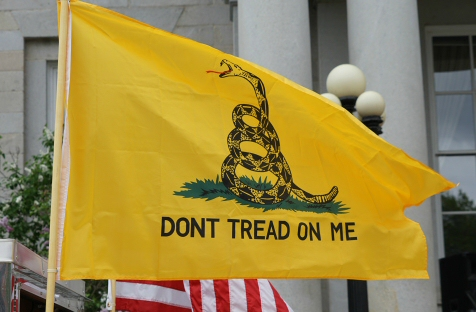 The Gadsden Flag flying in New Hampshire, 2018