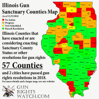 Voting Later Today on Illinois Gun Sanctuary County Referendums
